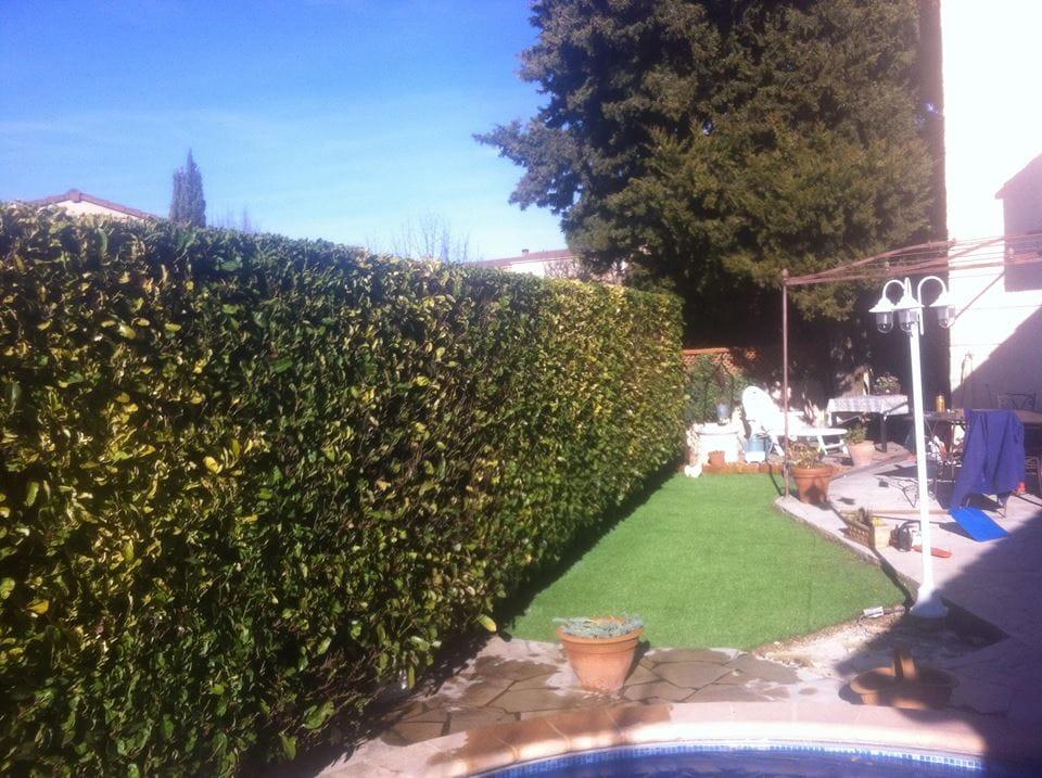 Azimut jardins vitrines de venelles for Entretien jardin 56